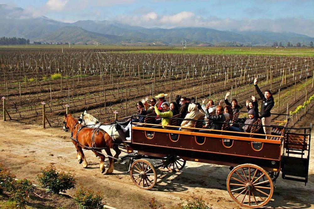 Weingut Santiago CHile