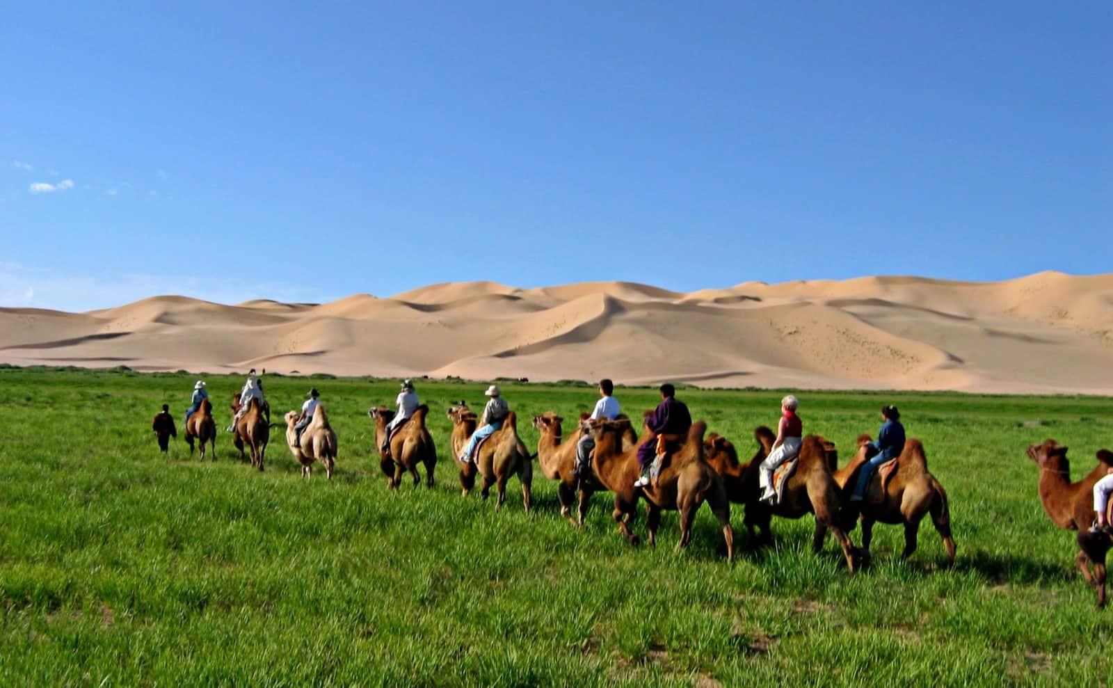 Kamelkarawane Mongolei