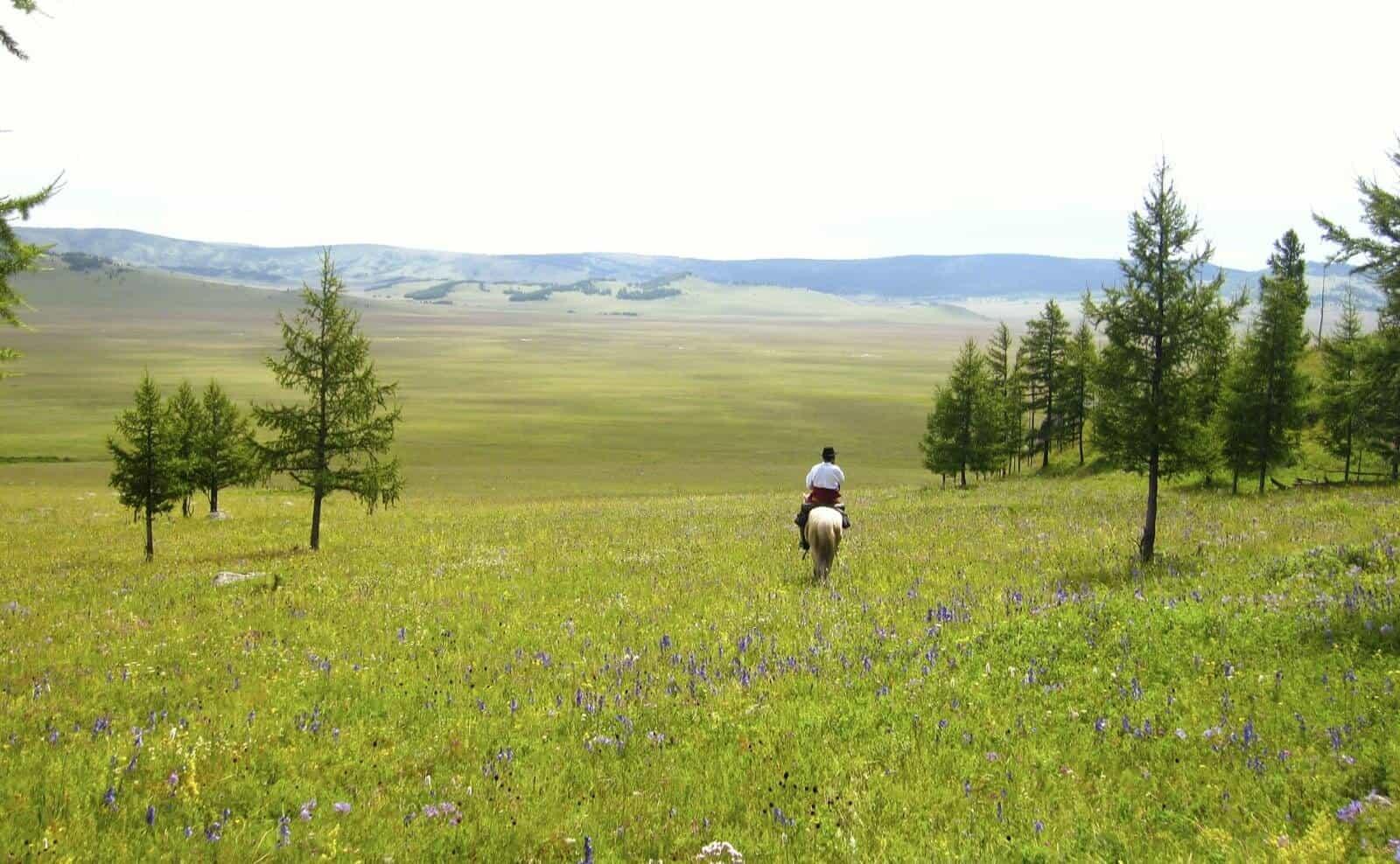 Reiten in der Mongolei