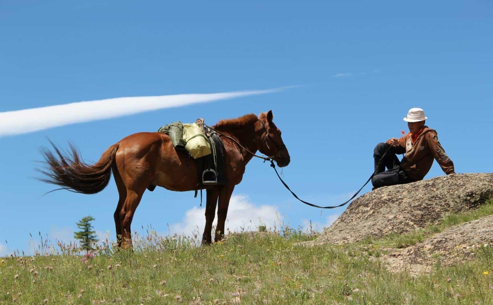 Yak Trek Mongolei