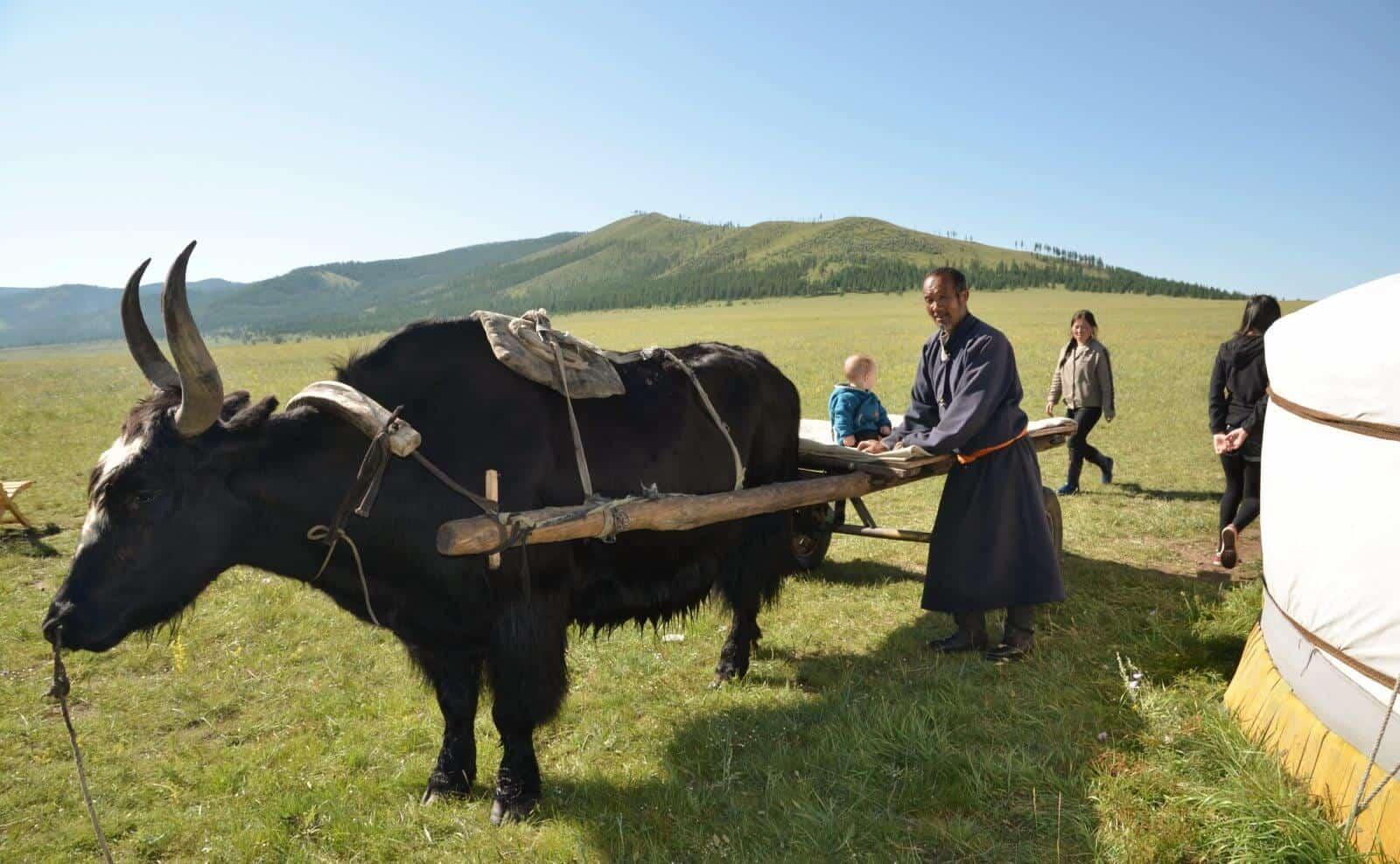 Mongolei Khan Khentii