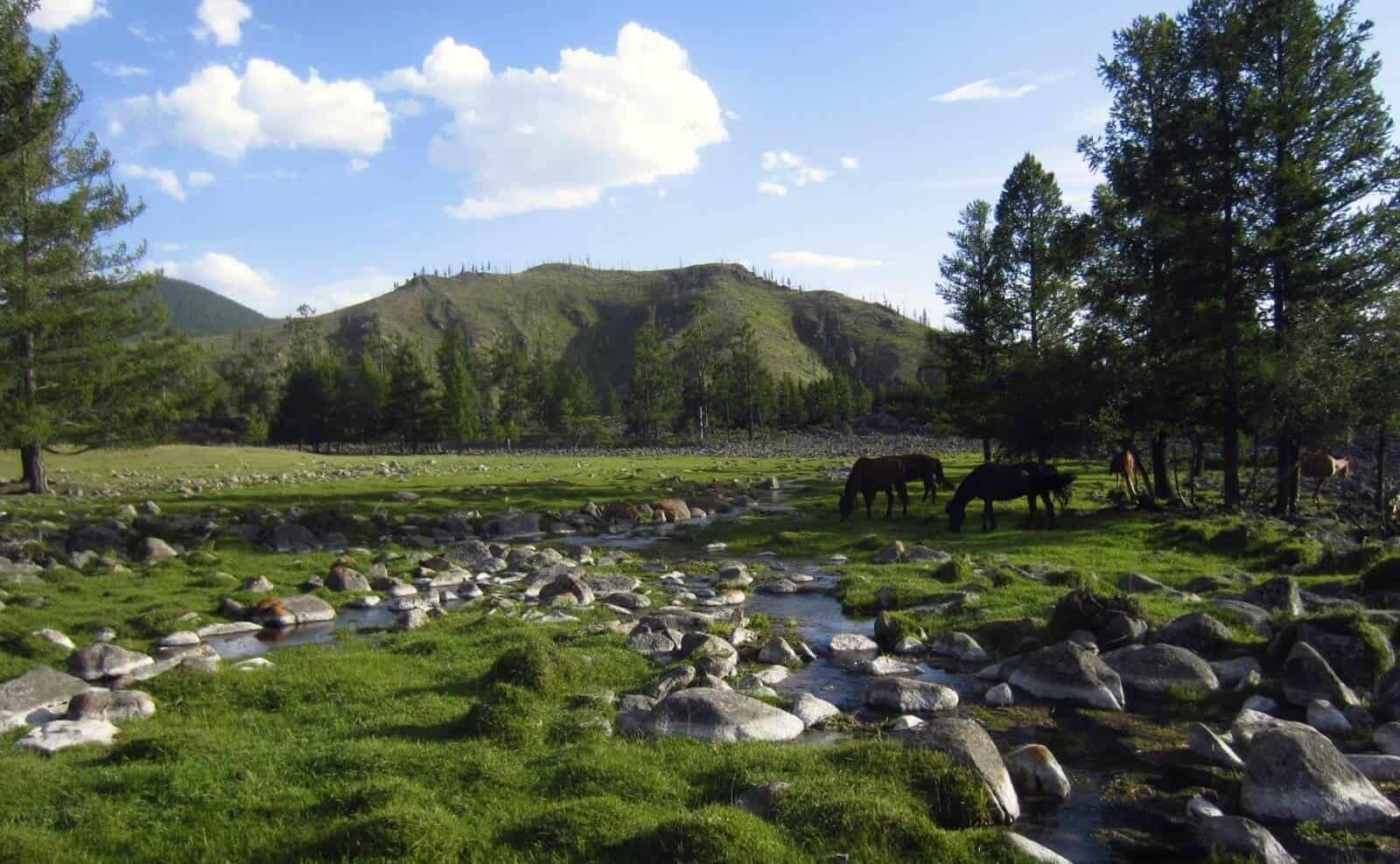 Orkhon Tal Mongolei