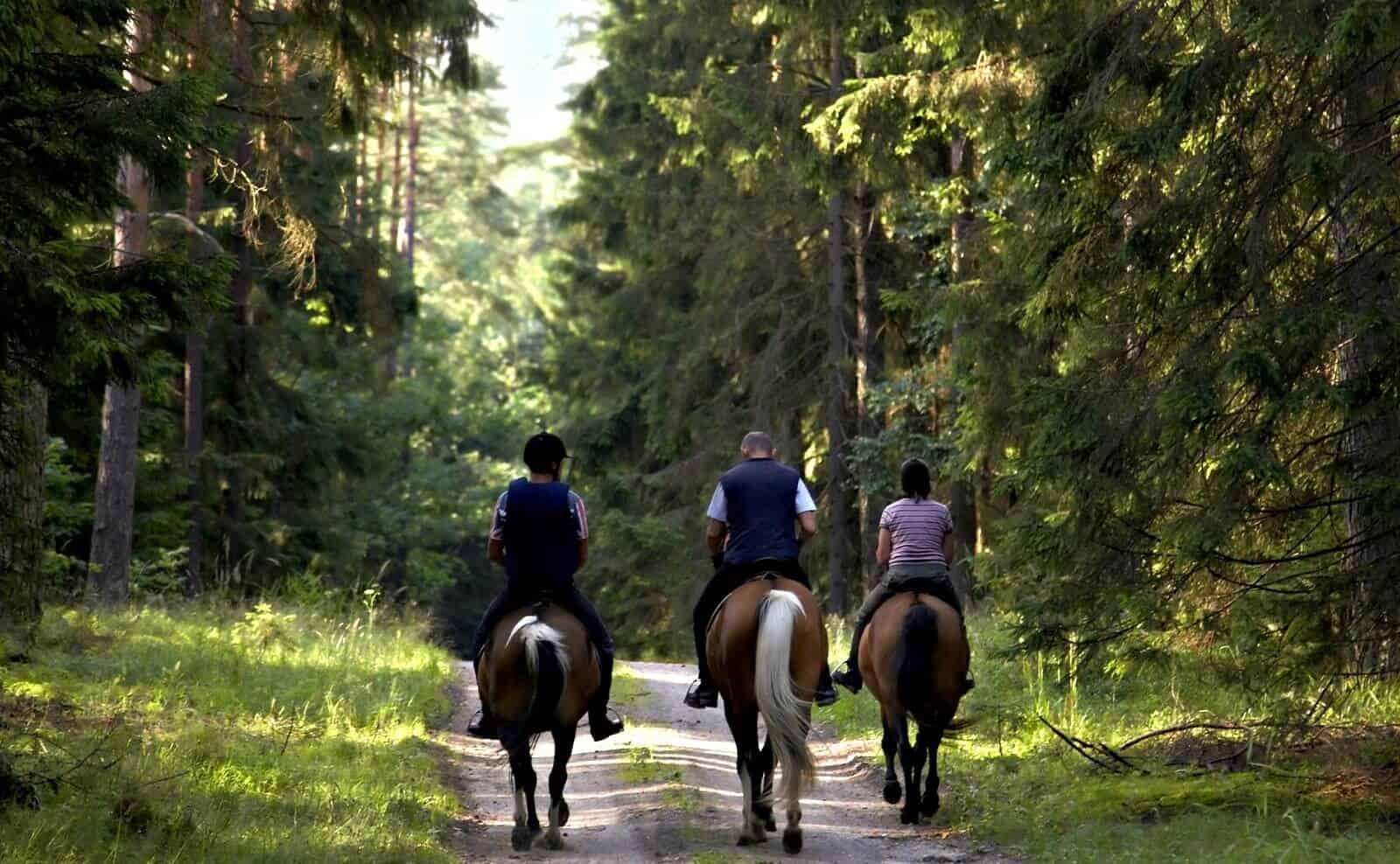 Zu Pferde in Argentinien