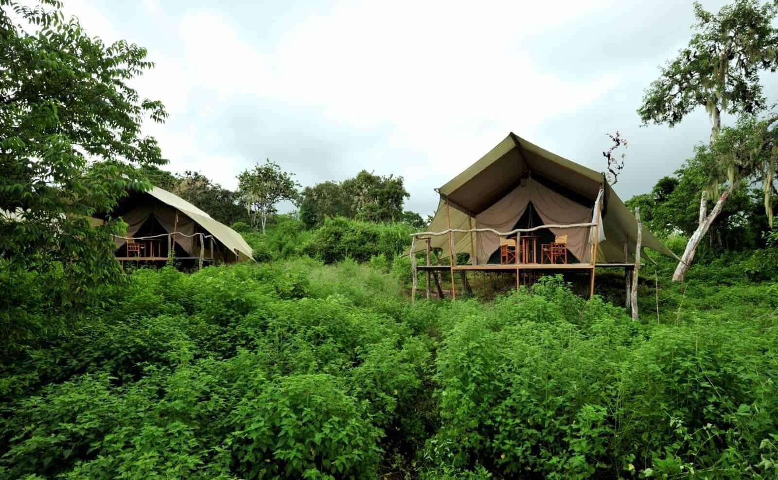 Galapagos Safari Camp Zelte