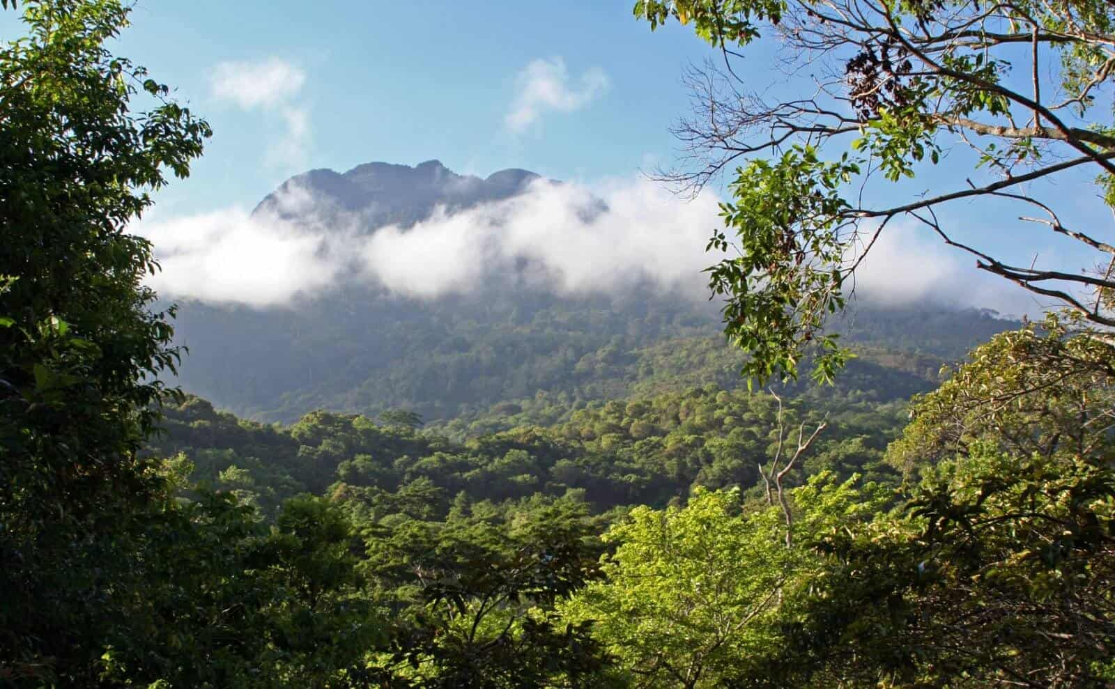 Gipfel Tansanias