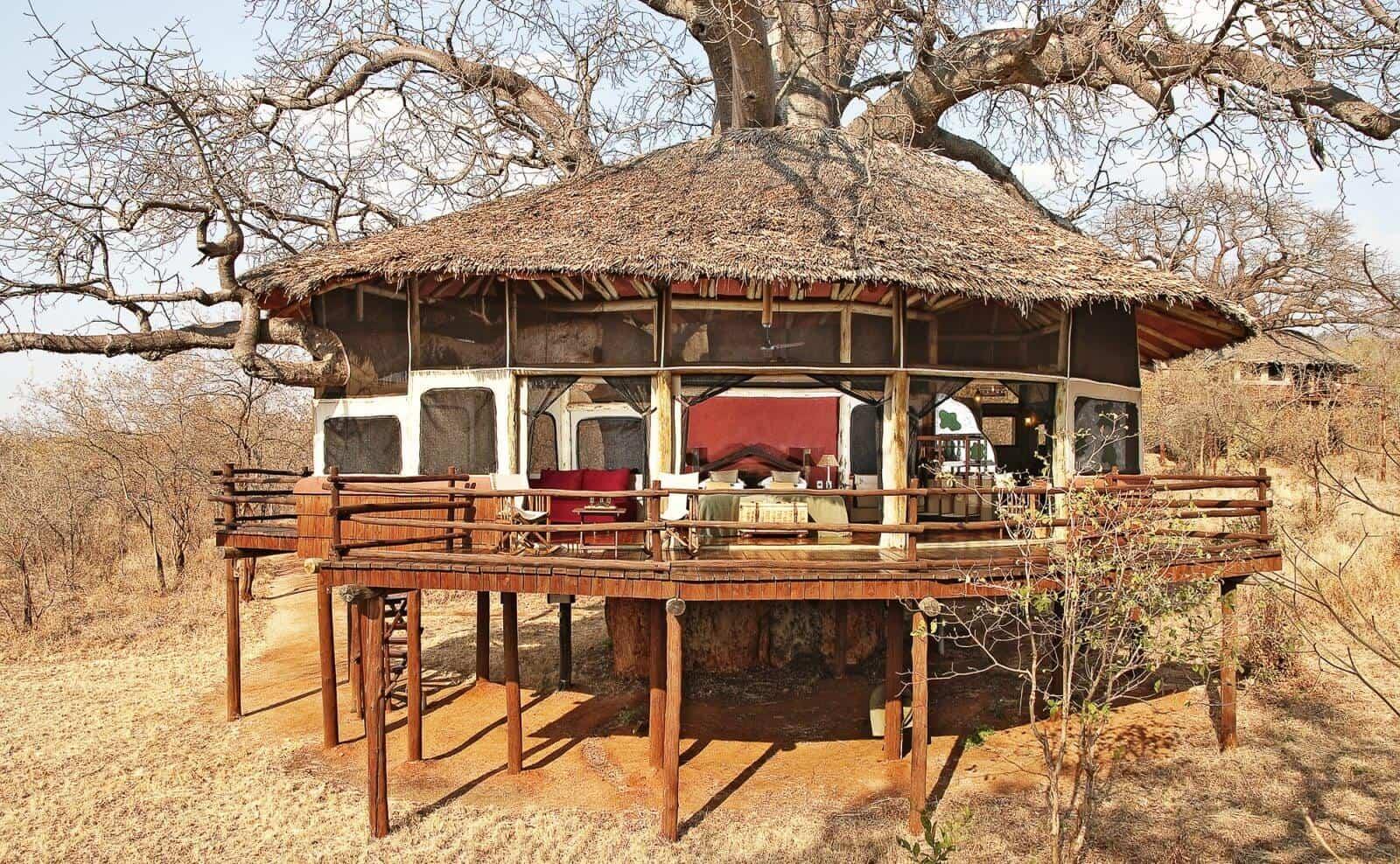 Tarangire Tree Top Lodge