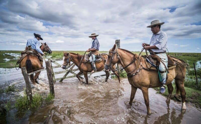 Argentinien Wetlands Gauchos