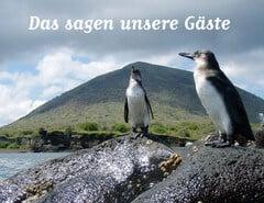 csm_Pinguine_Galapagos_1__a8d12a40e0