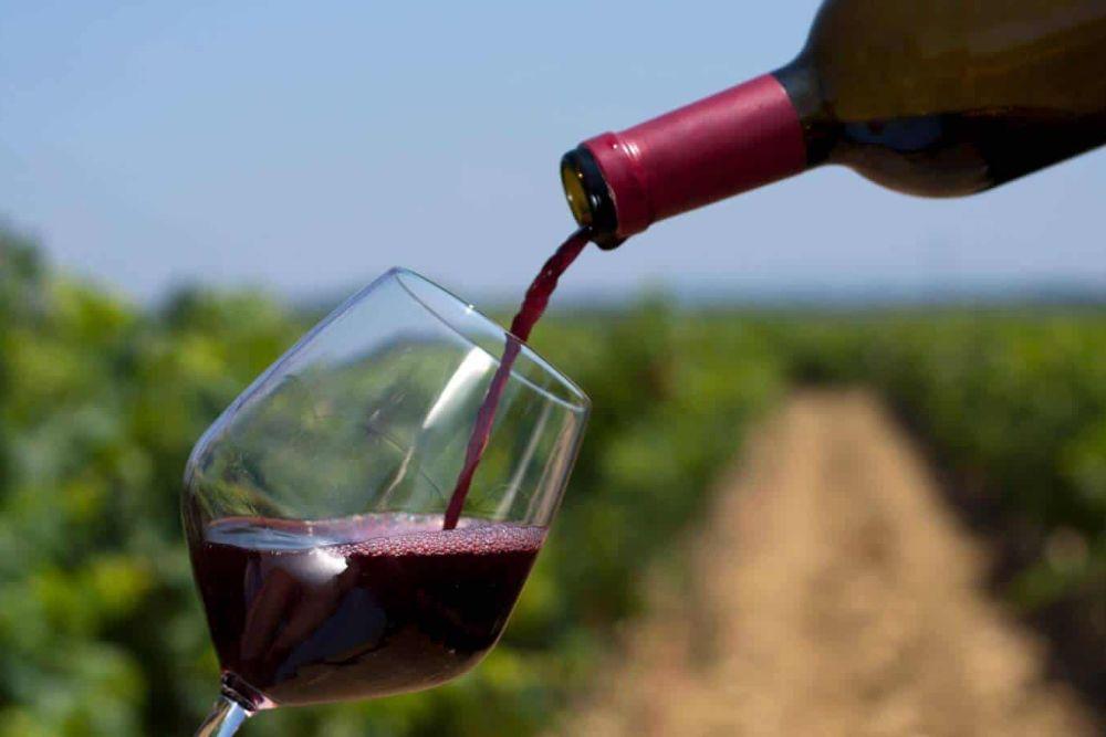Weintrinken bei Sonnenuntergang und Funkel-Sternenhimmel in einem herausragenden Boutiquehotel auf einem Weingut in Mendoza – die bedeutendste Weingegend Argentiniens