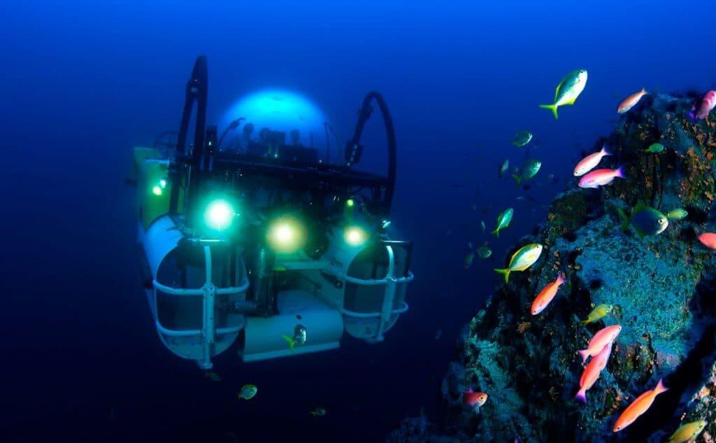 Costa Rica Unterwasserwelt