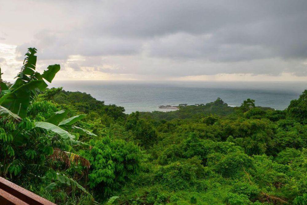 Traumhafte luxuriöse Unterkünfte inmitten eines 70 Hektar großen unberührten Regenwaldreservats