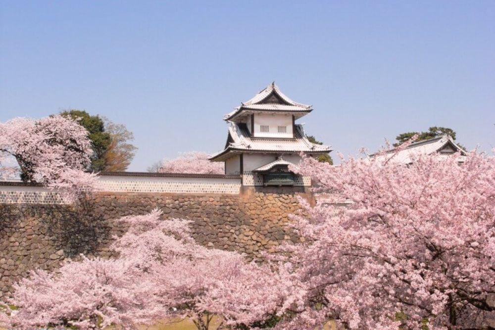 5b-Kanazawa-Castle-in-spring-860-x-576