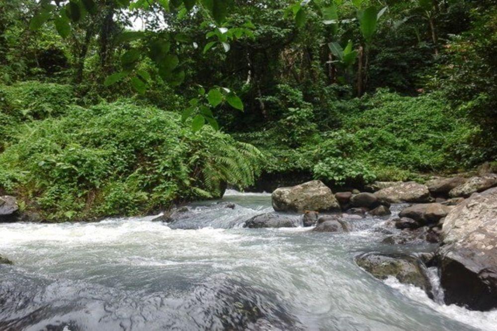 Bali-Trekking