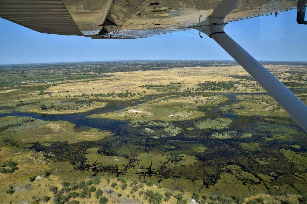 Okavango-Delta5