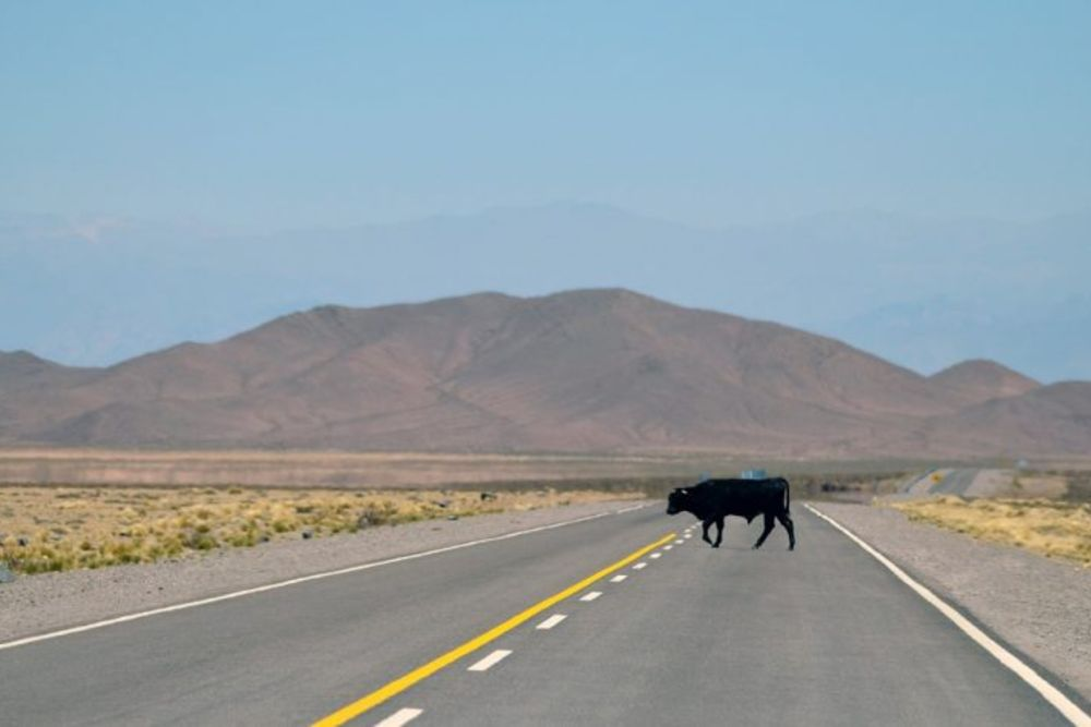 Salta_Argentinien-768x475