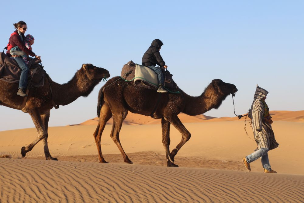 Camel Riding with kids (1)