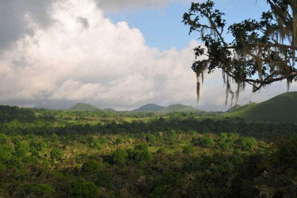 Lieblingshotel-Galapagos-Safari-Camp-1-1024x679