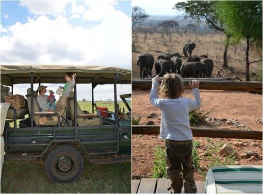Ratgeber-Safari-mit-Kindern-1