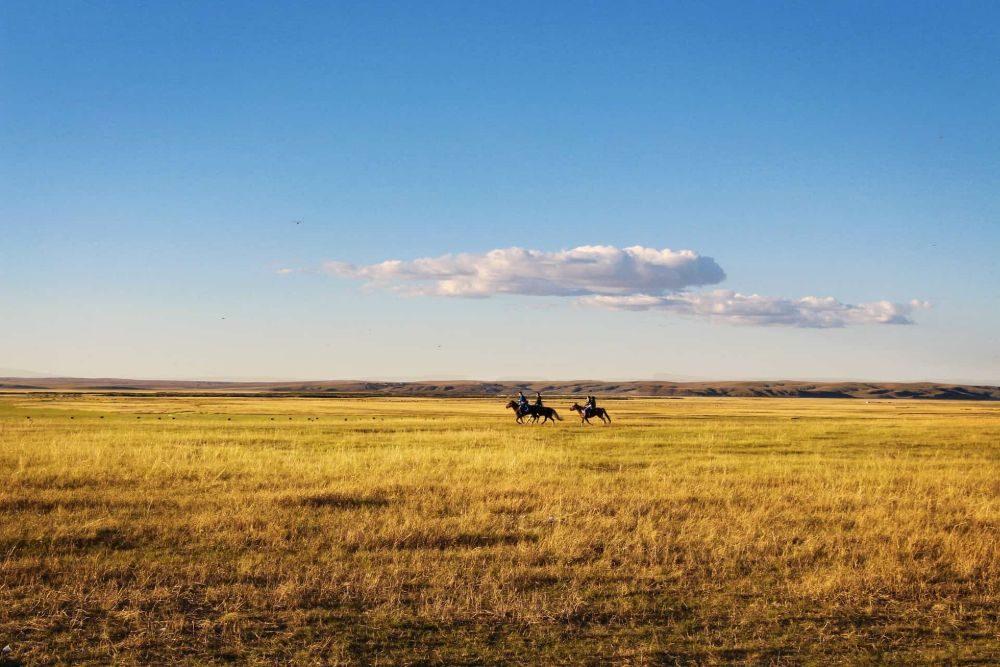 horseback-riding-678678_1920